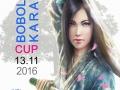 Bobolar-Karate-Cup-2016